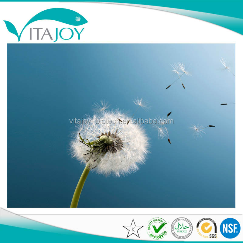 Dandelion Root Extract 20:1 (TLC) Herbal Extract in US stock with Fast Delivery