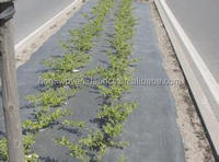 170-200gsm sold to USA Dewitt auti UV composite weed barrier /weed mat/ground protection mat