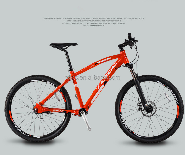 New Popular Sport Bike/Chainless Transmission Mountain Bicycle