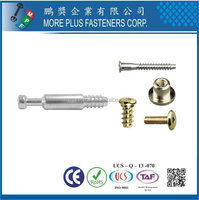 Made In Taiwan Stainless Steel Copper Screw In Furniture Casters M8x1.5 Screws Metric Screw St3.5