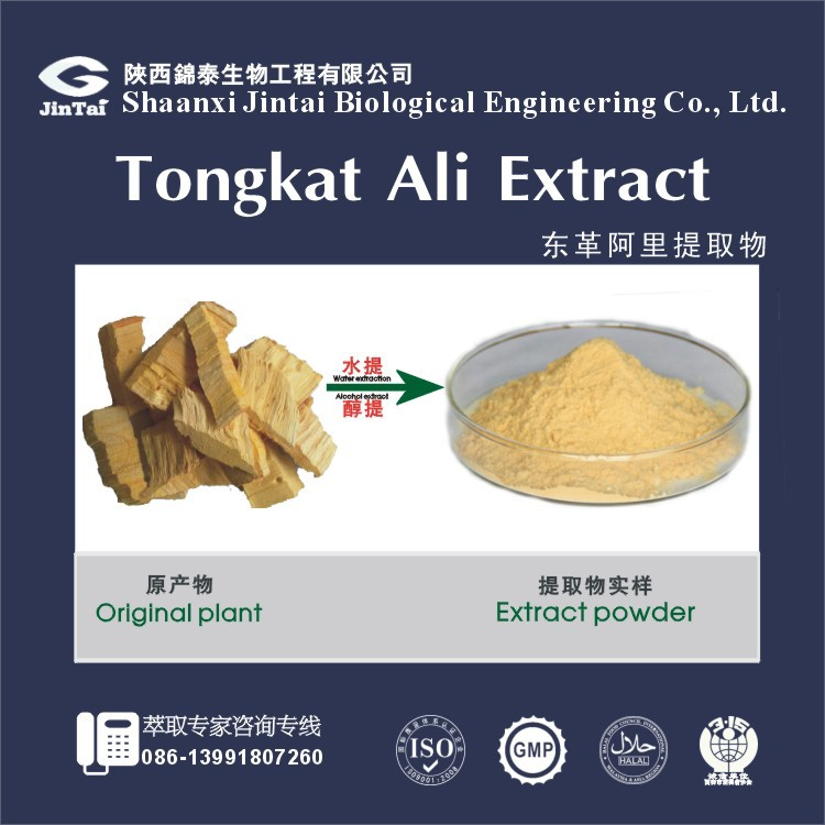 natural booster tongkat ali extract powder 50:1
