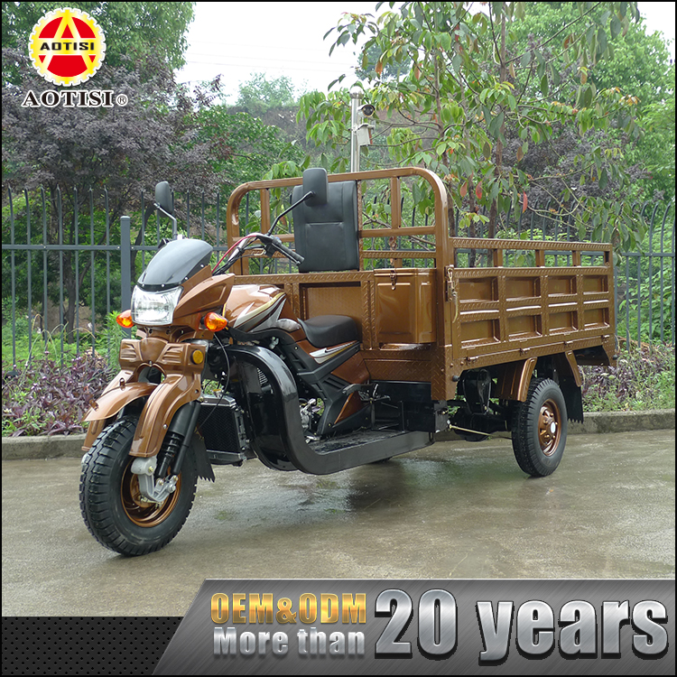 China supplier high quality 246ml 3 wheel motor van cargo adult tricycle