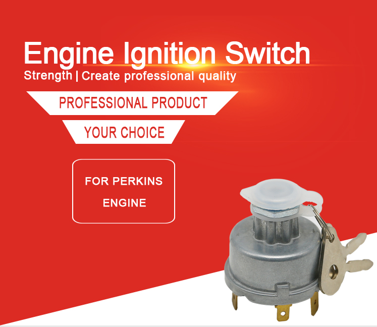 Chinese Factory Agricultural Accessories More Popular Ignition Switch for OEM 1874120M93