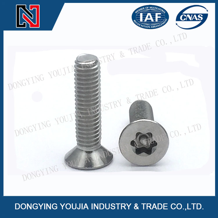 GB2674 Stainless Steel Hexalobular socket raised countersunk head screws
