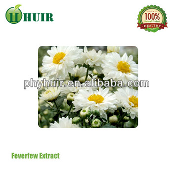 manufacture lowest price supply high quality chamomile extract(P)