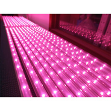 Best quality 300w led grow panel lamp