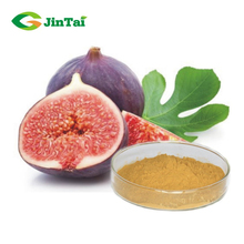 Natural 10:1 20:1 fig extract/ ficus carica extract