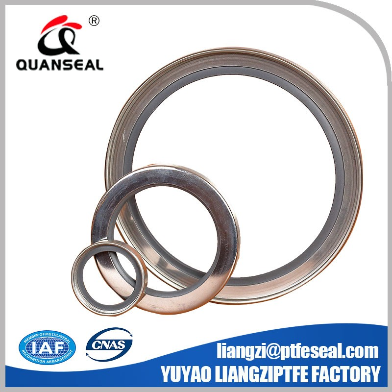 single or double lip rotary mechanical shaft seal