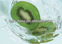 2014 new hot sale high quality chinese frozen kiwi and gold kiwi