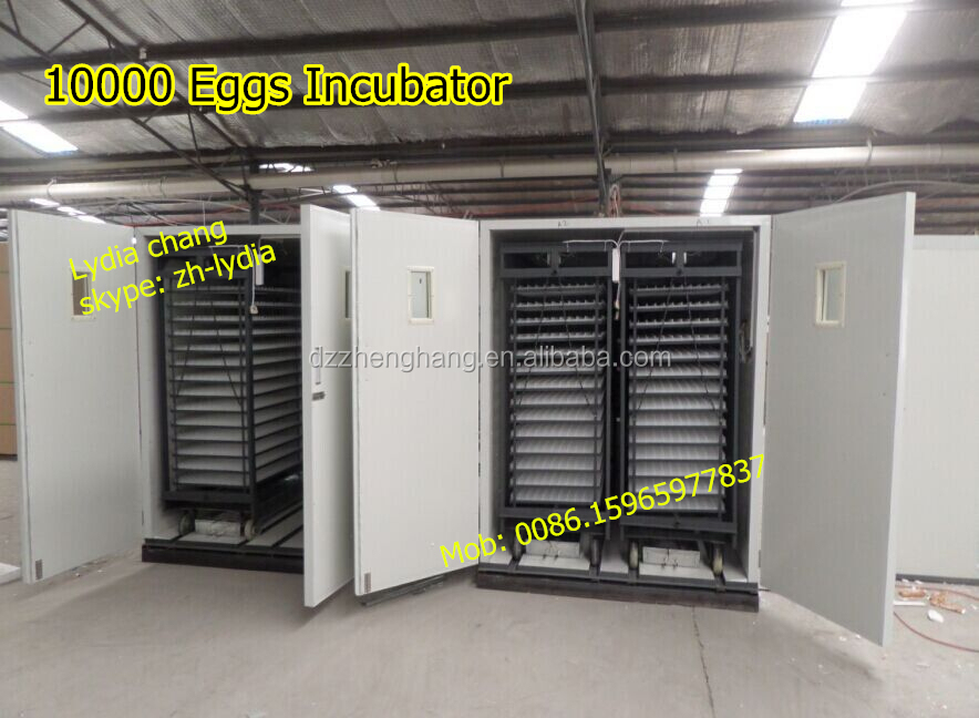 large 9856 chicken egg incubator (Lydia chang: 0086.15965977837)