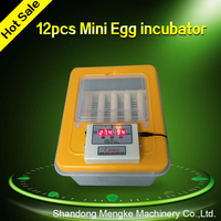 New Type Mini Egg Incubator of 12 Eggs for Home Use for Sale