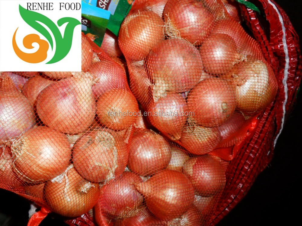 new crop fresh onion importer from dubai