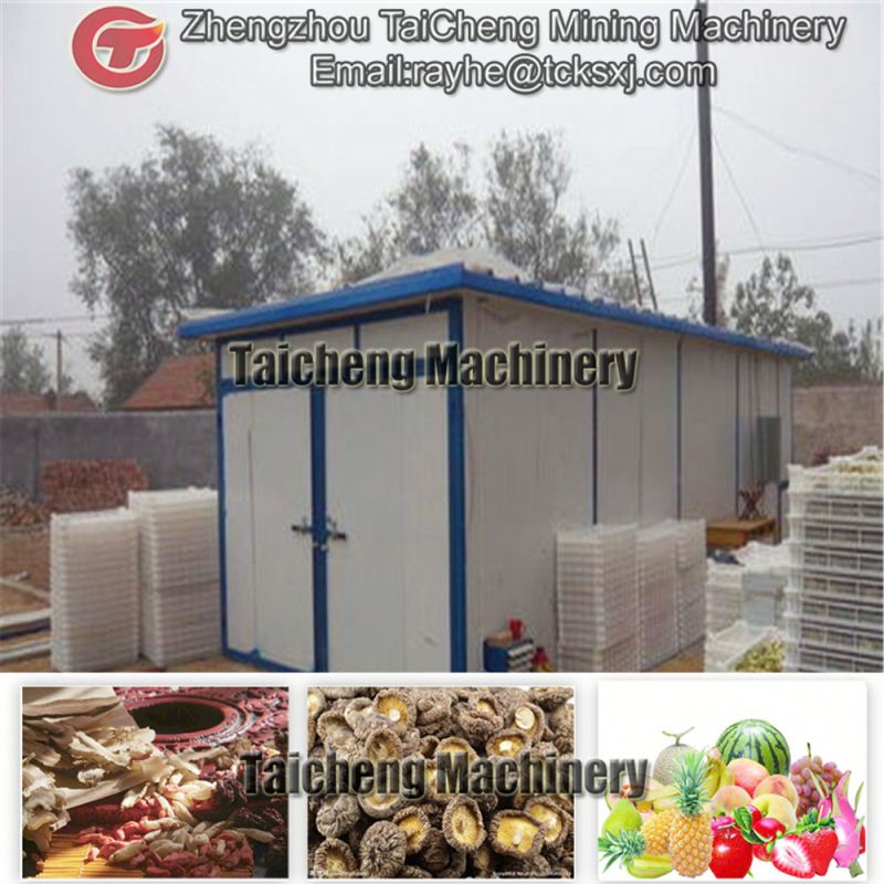 60t/h electric industrial fruit dehydrator in Spain