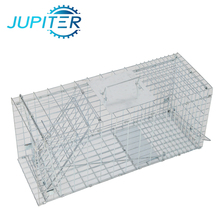 Galvanized humane laboratory folded wire mesh mouse rat trap cages