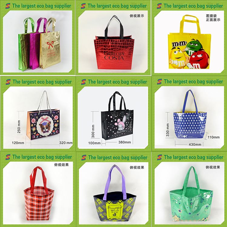 Wholesale Non Woven Shopping Bag 2010 Non Woven Shopping Bag