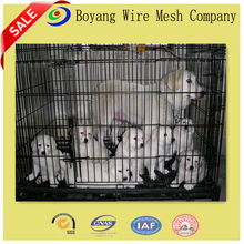 manufacturer China Large dog cages animal cage