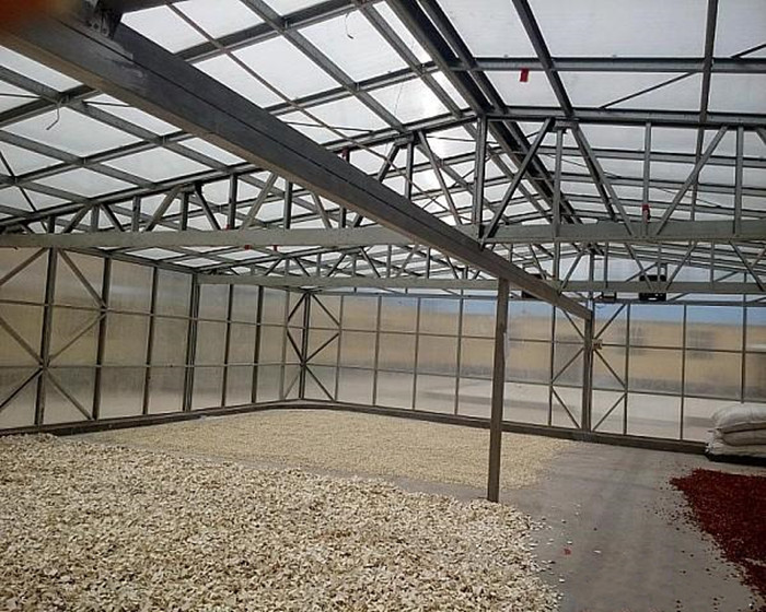 garden used greenhouse twin wall polycarbonate sheet for sale