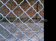 Electric Galvanized wires Beautiful grid wire mesh or Meg fence, nets (20 years factory)