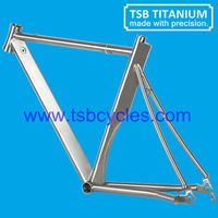 Titanium time trial bicycle frame TSB-T1001