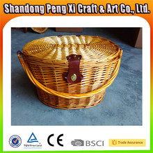 Golden wicker bike front basket for pet carrier