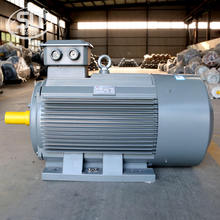 IE2 315S 6 pole 1000rpm ac 75kw 100hp electric motor