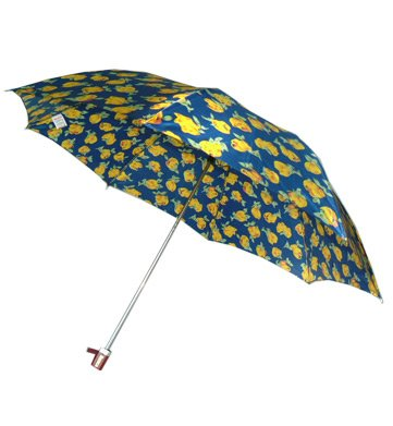 Rainco Ladies Umbrella