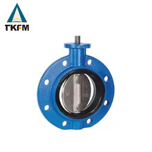TKFM chinese reliable supplier pn16 ductile iron double seal offset ss316l butterfly valves