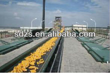 sweet corn distributors with good quality products