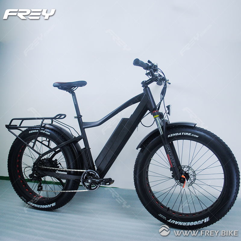 3 Level LED / 5-9 Levels LCD Displayer As Option.-760mm Lengh Fat Bike Electric 1000w With Wellgo Mountain Style Pedals