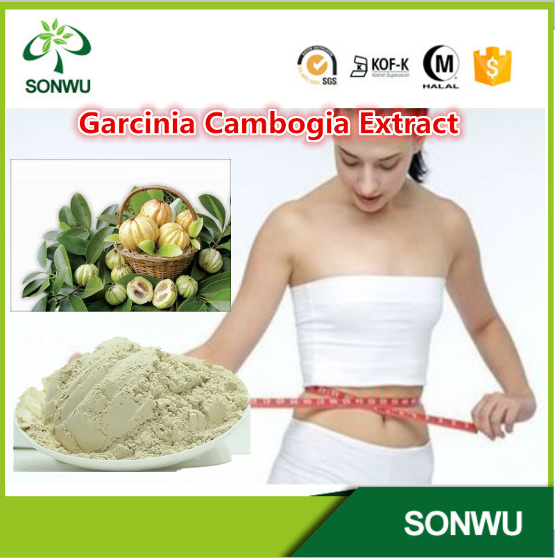 Lose Weight Product Natural Garcinia Cambogia Extract Powder/Hydroxy Citric Acid