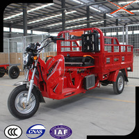 New Three Wheels Moped, Triciclos de Motor Gasolina, Motorized Motor Tricycle for Sale
