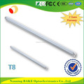 High quality 3 Years Warranty t8 Led Tube Lighting