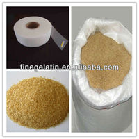 industrial animal glue with best price and derived from fresh animal hide ,skin or bone gelatin