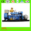 World global warranty weifang gas generator with CE certificate