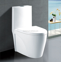 Foshan ceramic toilet manufacturer with factory toilet price washdown one piece toilet wc