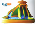 Giant Inflatable Water Slide with Water Pool , Inflatable Pool Slides for Inground Pools