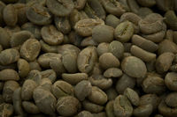 Green Coffee beans from Ethiopia