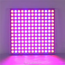 New Design High Quality 45w Panel Led Grow Light ,Specialized in Seeding