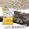 easy to scoop wasy kitty sand cat grooming product