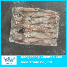 New product frozen squid for sale