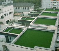 Natural Looking Landscaping Artificial Grass For