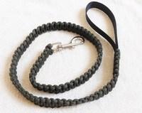 Good quality unique nylon pet collar and lead