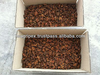 Star aniseed spice from Vietnam