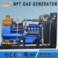 Customized CE approved 300 kw wood fire generator price