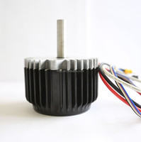1000 watts electric motor for escooter and rickshaw