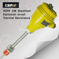 WZPK-240 sheathed type explosive-proof thermal resistor
