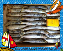 Frozen style all type of sardine fishes IQF whole round seafood