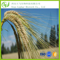 High Quality Pure Barley Malt Extract