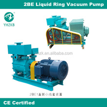 Chinese famous industrial pump