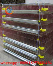 Low price metal automatic commercial layer quail cages for sale